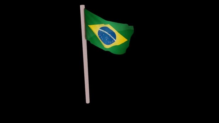 Flag_02