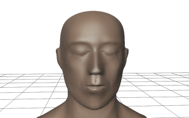 Head Topology - 12