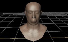 Head topology - 4
